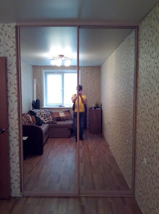 Встроенные шкафы-купе-Шкаф-купе с зеркалом «Модель 116»-фото1
